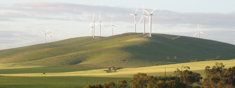 windfarm in snowtown